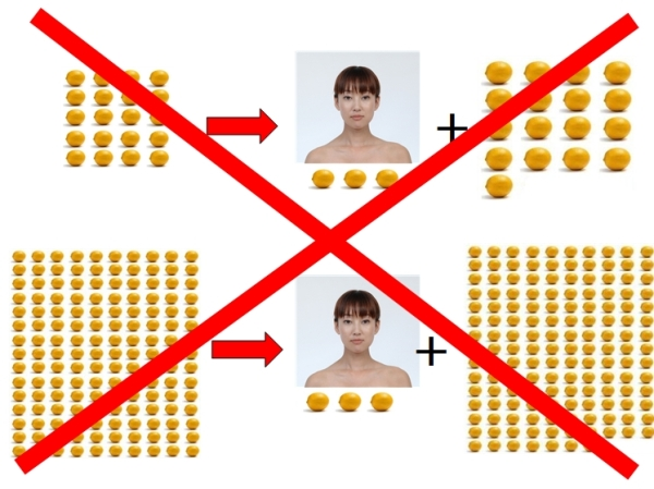 画像の説明